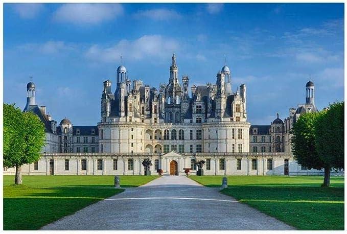 Französisches Schloss 11383 Puzzle DToys 1000 Teile Château de Chaum...