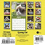 2018 Grumpy Cat Mini Calendar