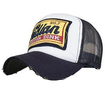 LMMVP Sombrero Gorra para Hombre Mujer Talla única Casquillo Bordado de Verano Sombreros de Malla para Casuales Sombreros Hip Hop Gorras de Béisbol (D): ...