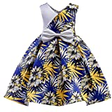 Niyage Girls Princess Retro Party Wear Prom Gown Flower Dress C 2-3 Years