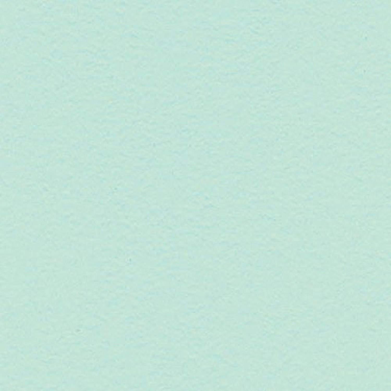 KAREN FOSTER 12 x 12-Inch Cardstock Paper, 25