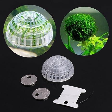 ECMQS Acuario Float Moss Ball filtro adornos, Acuario Verde Gamba vida Planta titular