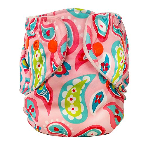 (FuzziBunz Adjustable First Year Pocket Diaper - Playful Paisely - M/L/Xl -)