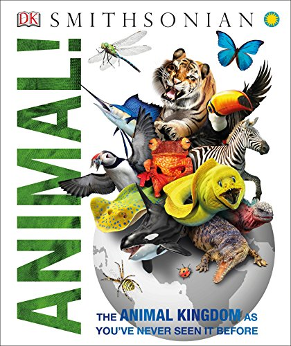 Animal! Hardcover – September 6, 2016