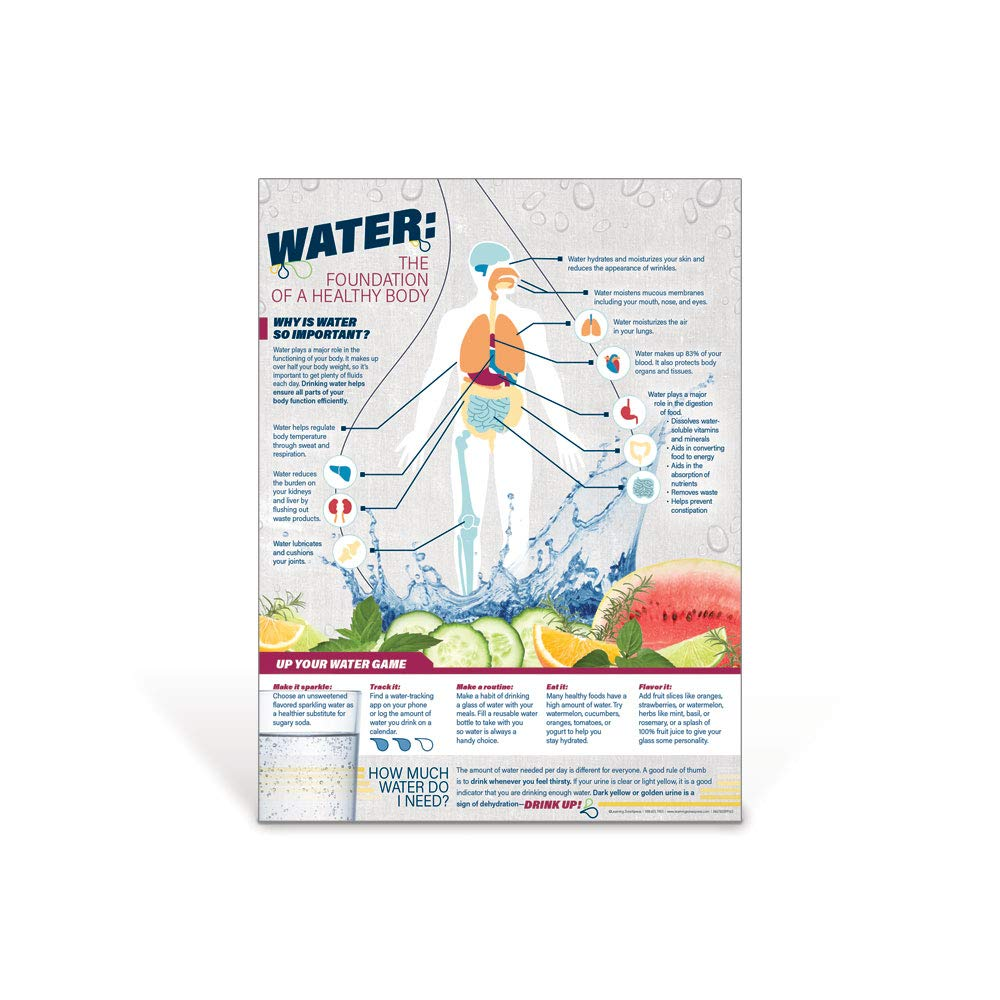 "Nutrition Poster for Classrooms, Health Offices, Wellness Fairs | Water: The Foundation of a Healthy Body Poster | 18"" x 24"" Laminated Poster"