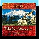 Gentle World: Tibetan Wonder