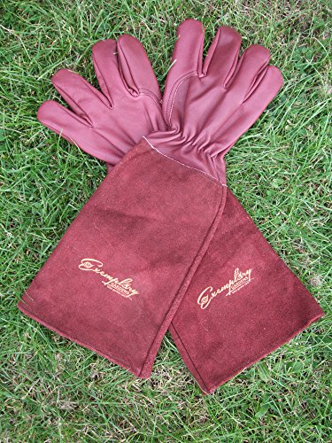 Rose Pruning Gloves For Men And Women. Thorn Proof Goatskin Leather  Gardening ...