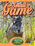 Small Game, Janet Gurtler, 1619135086