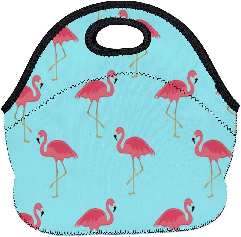 Women Men Insulated Neoprene Lunch Bag Lunchbox Food Container Gourmet Tote Storage Bag Pouch for Travel School Office Picnic (Flamingo Floral Sky Blue)