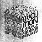 Revolution in the Elbow of Ragnar Agnarsson Furniture Painter