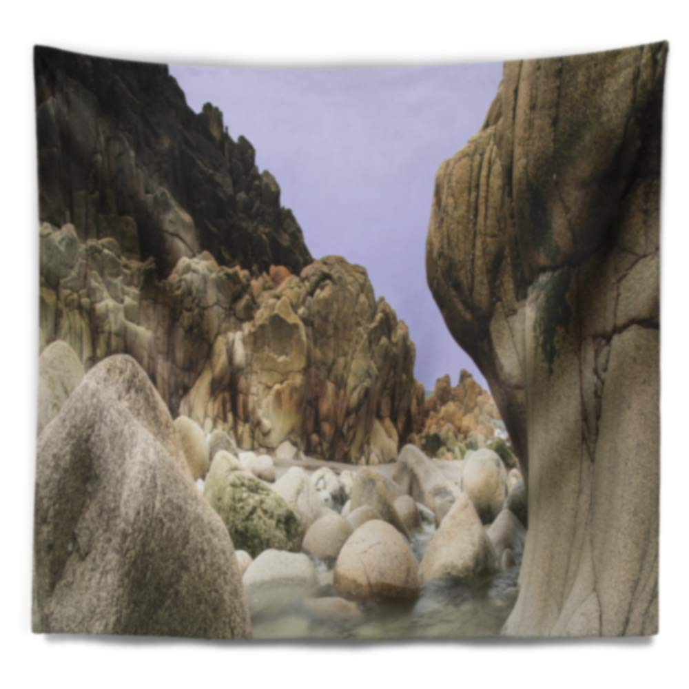 Created On Lightweight Polyester Fabric x 32 in Designart TAP11130-39-32  Smooth Rocks in Coastline Panorama Landscape Blanket D/écor Art for Home and Office Wall Tapestry Medium 39 in