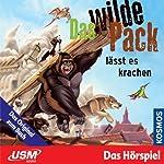 Das wilde Pack lässt es krachen (Das wilde Pack 4) | André Marx,Boris Pfeiffer