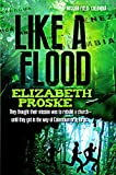 Front cover for the book Like A Flood by Elizabeth Proske