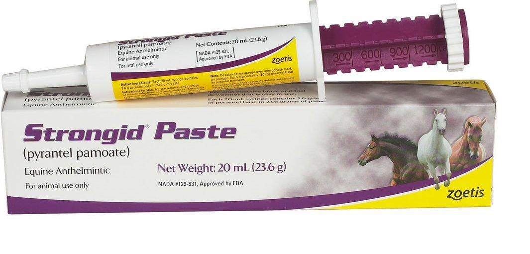 Pfizer Strongid Dewormer Paste for Horses, 23.6gm Lambriar Vet 1156