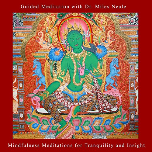 Mindfulness Meditations for Tr...