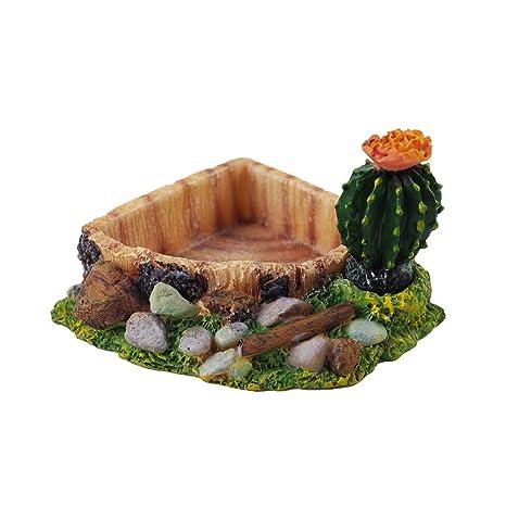 Cuenco de la comida de piel de serpiente omem reptil Habitat, caja de cría de