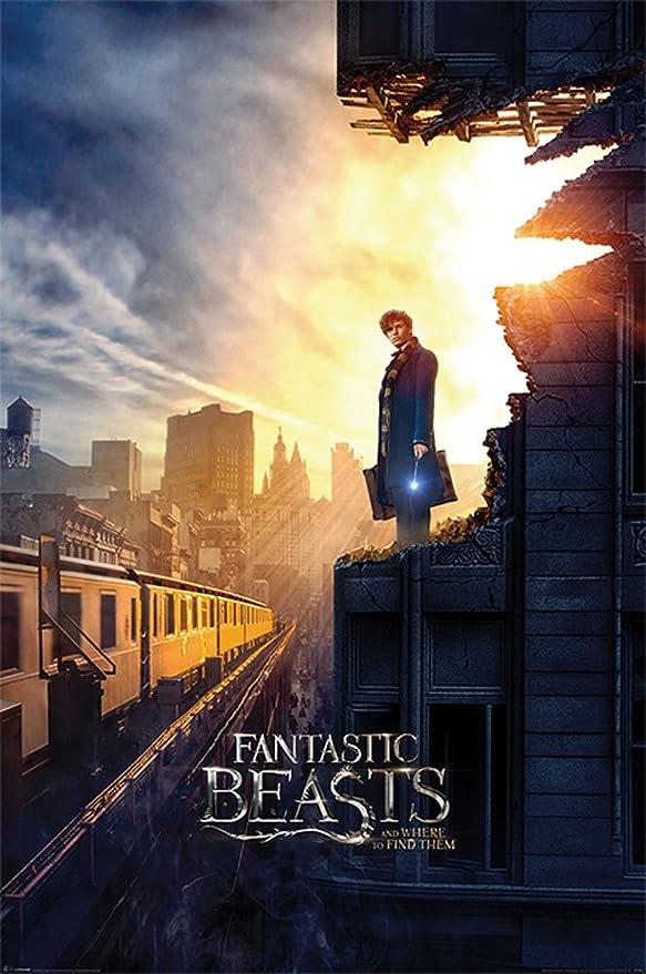 Fantastic Beasts - Phantastische Tierwesen - Dusk - Film Kino ...
