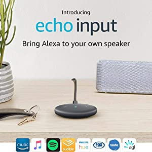 Introducing Echo Input – Bring Alexa to your own speaker - Black