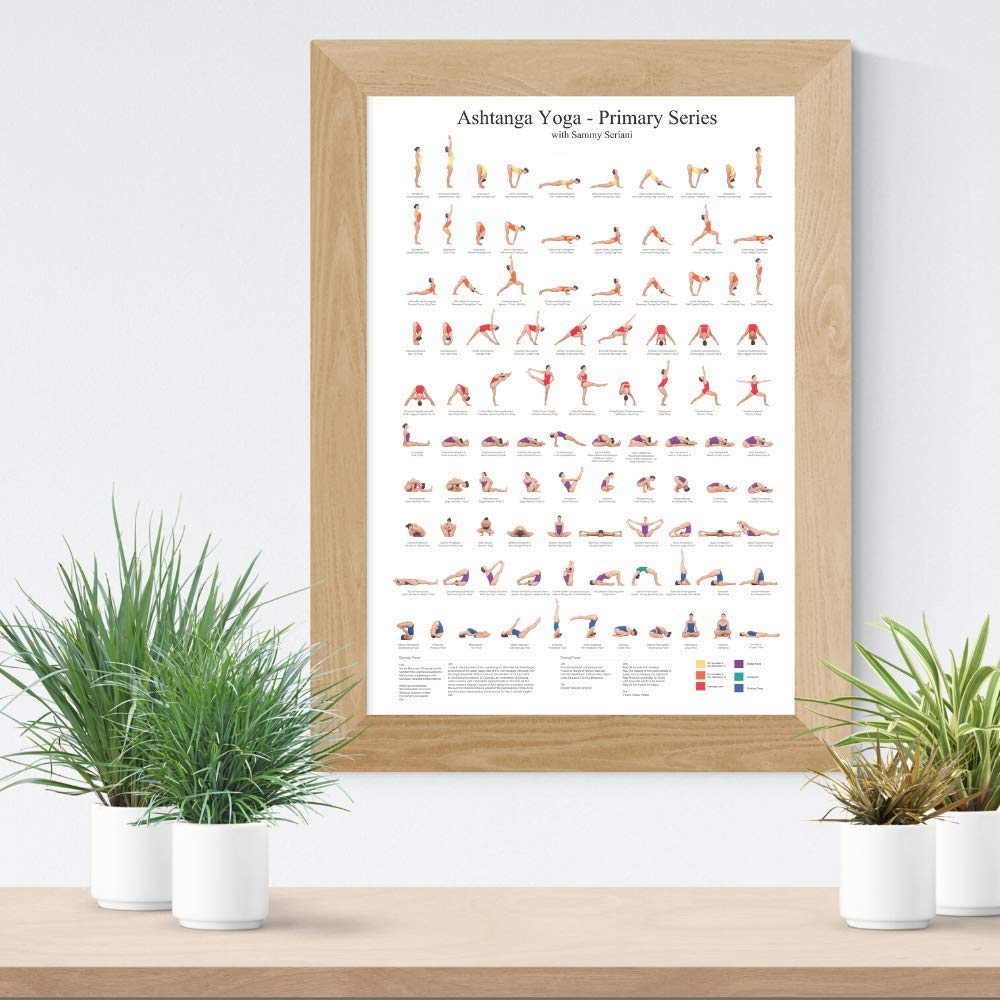 Ashtanga Primary Series Practice Chart  Yoga Poses Poster  24x36 inch  Sequence of Asanas   Essential Yoga Chart  Cool Eclectic Colorful Wall Decor  Infographic Art Print