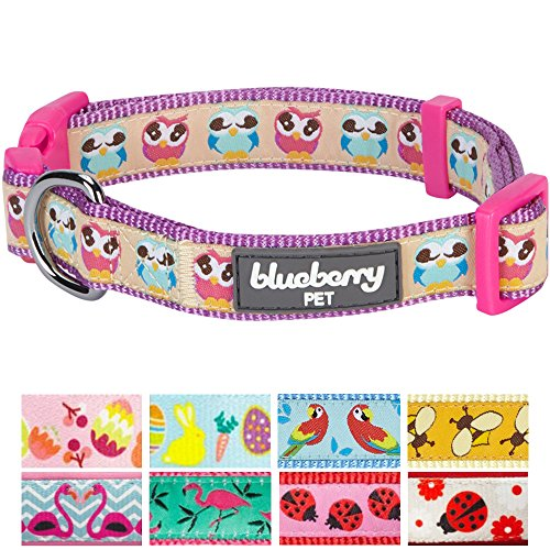 Designer Dog Collars - Blueberry Pet New 9 Patterns Statement Nighty Owls Designer Dog Collar, Medium, Neck 14.5