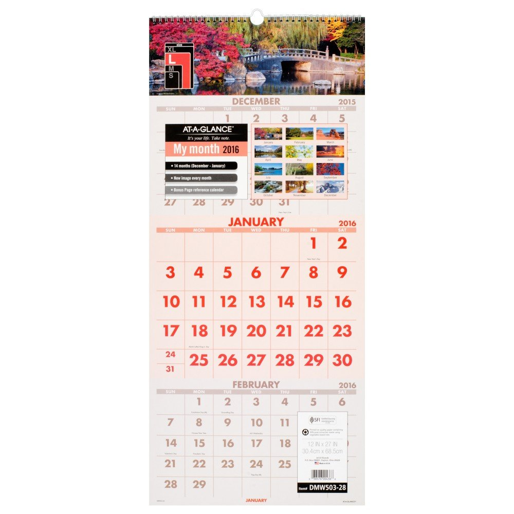 Amazon.com : AT-A-GLANCE 3-Month Wall Calendar 2016, 14 Months ...