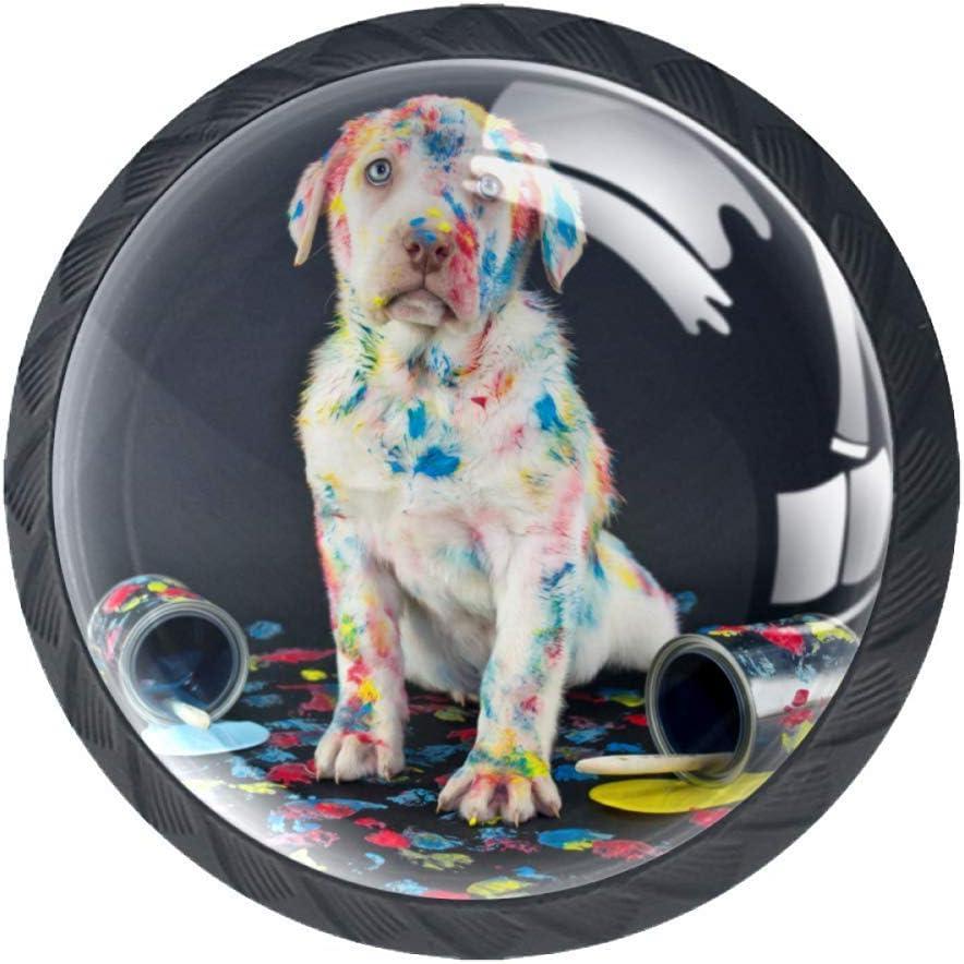 Matte Black Knobs Colored Labrador Dog Closet Door Knobs Glass Crystal Dresser Knobs Kids Decorative furniture Knobs For Living Room Bedroom Bathroom Kitchen