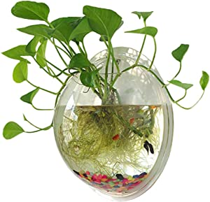 Sweetsea Hanging Wall Mounted Fish Bowl Aquaponic Tank Aquariums Plant Fish Bubble - Clear (Medium)
