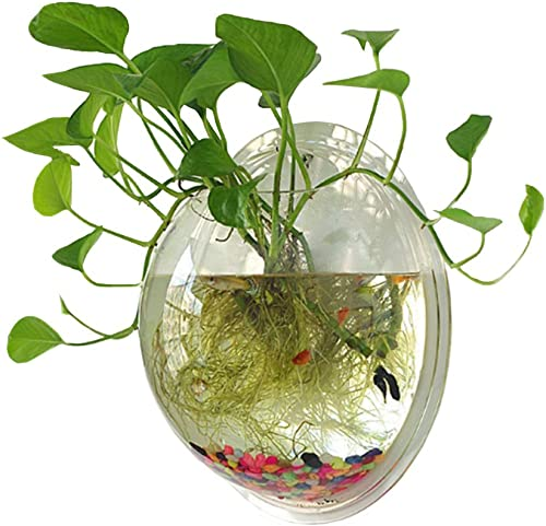 Sweetsea-Hanging-Wall-Mounted-Aquaponic-Fish-Bowl
