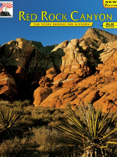 Nevada's Red Rock Canyon : The Story Behind the Scenery Nevada Rocks