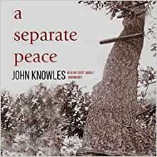 Separate peace climax essay