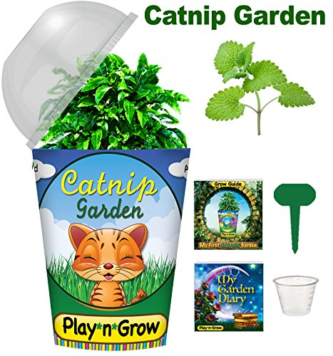 Children's Organic Plant Kit - Catnip Window Garden: Complete Indoor Grow Set - Seeds, Soil, Planter, Greenhouse Dome, Water Tray & Cup, Growing Guide, Diary. Unique Educational DIY Kid's Gift.