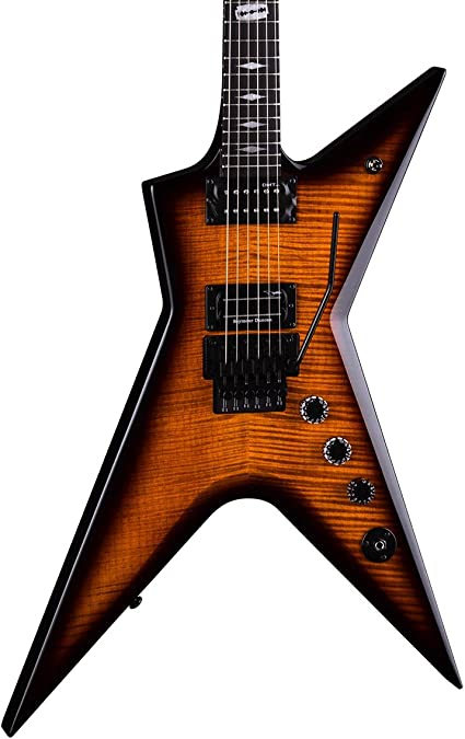 Dean Stealth Floyd FM - Guitarra eléctrica con funda: Amazon.es ...