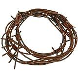 Amazon.com: Beistle Silver Barbed Wire Garland 12-Feet