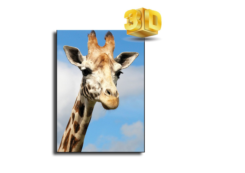 Carte postale lenticulaire 3D Motif girafe