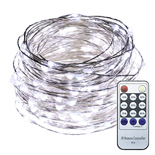 ER CHEN 66ft Led String Lights,200 Led Starry Lights on 20M Silver Coating Copper Wire String Lights + 12V DC Power Adapter + Remote Control(White)]()