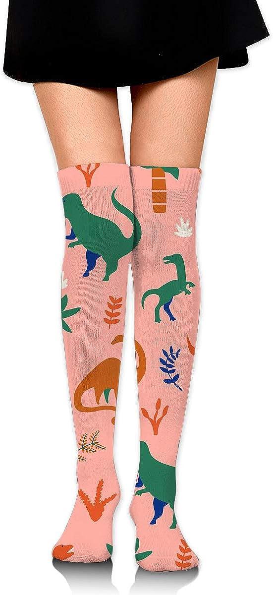 Womens Knee High Socks 2 Pairs Best For Pregnancy And Travel Dinosaurs Long Socks For Women