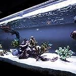 White Aquarium LED Strip Light Set, 1...
