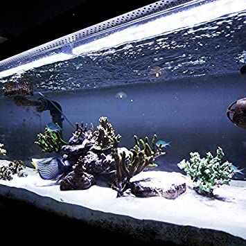 White aquarium led strip light set 100cm fully waterproof white aquarium led strip light set 100cm fully waterproof submersible 60 super mozeypictures Images