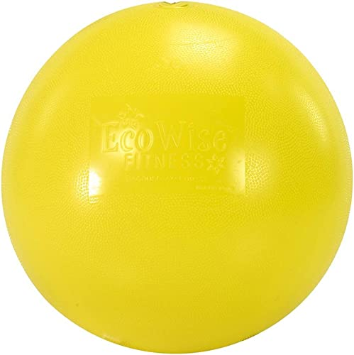 EcoWise Fitness Ball 45 cm