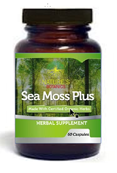 Amazon Com Sea Moss Irish Moss And Bladderwrack Vegetable Capsules