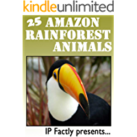 25 Amazon Rainforest Animals. Amazing facts, photos and video links to some of the most amazing animals from the rainforests! (25 Amazing Animals Series Book 17)