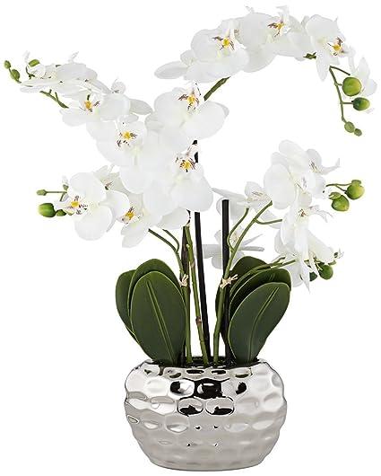 Amazon Dahlia Studios White Phalaenopsis 23h Faux Orchid In
