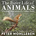 The Inner Life of Animals: Surprising Observations of a Hidden World Audiobook by Peter Wohlleben Narrated by Thomas Judd