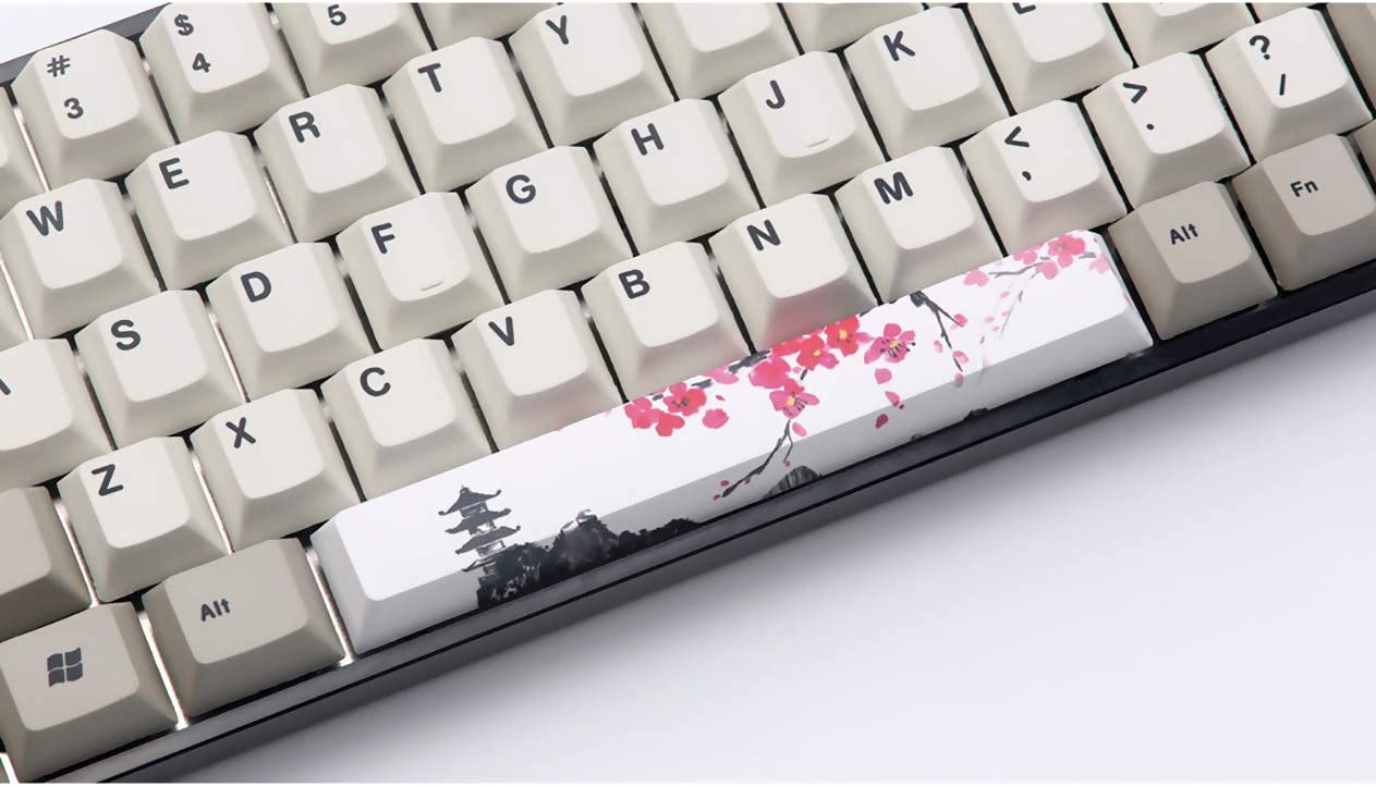 chrry Height Five-Sided Sublimation Space SSSLG Mechanical Keyboard keycap 6.25U Property keycap,3 PBT Material