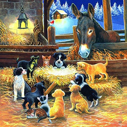 SunsOut Barnyard Nativity 500 Pc Jigsaw -