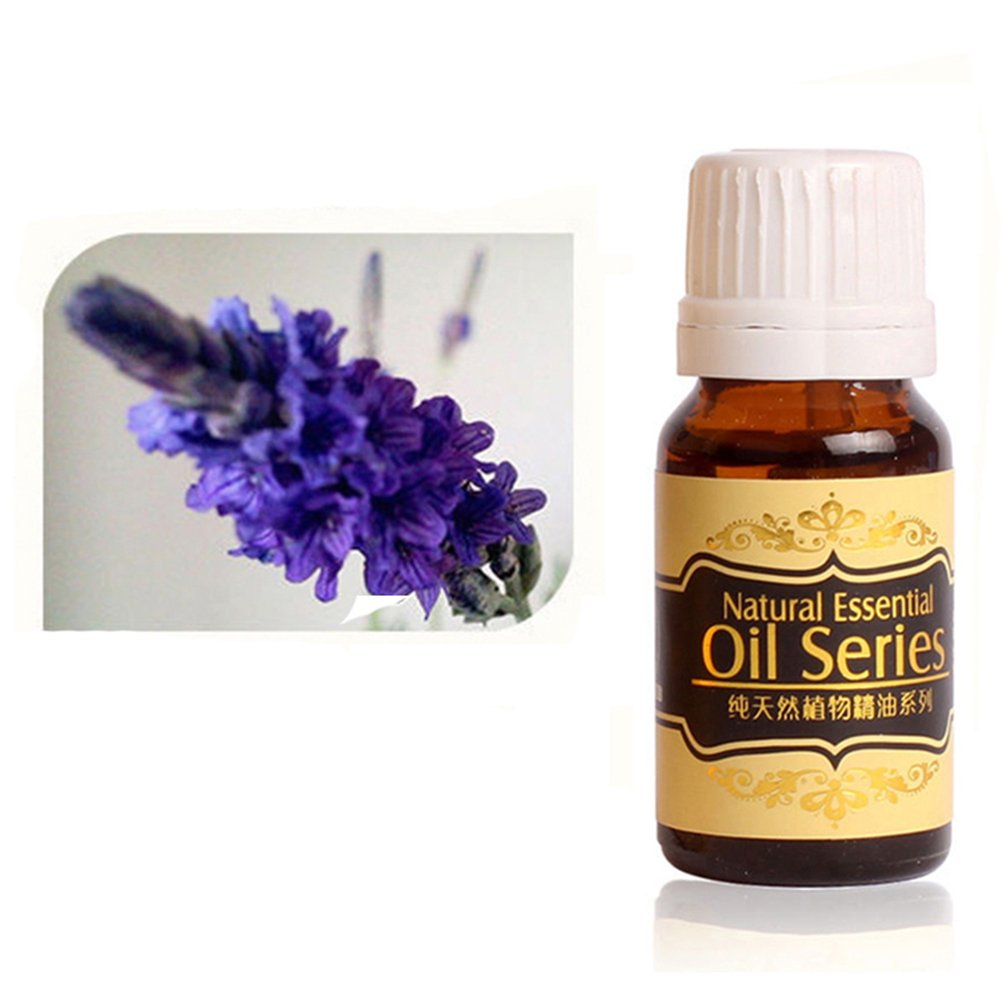 Gracefulvara Pure Natural Essential Oils Aromatherapy 10ml, Lavender