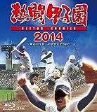 熱闘甲子園 2014 ~第96回大会 48試合完全収録~ [Blu-ray]
