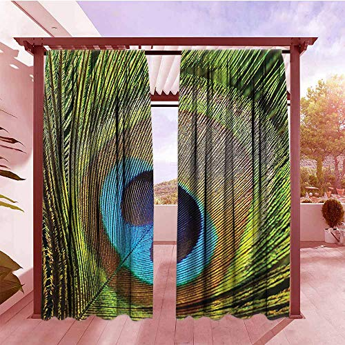 (Curtain Tailored Peacock Decor Peacock Feather with Eye Shape Closeup Picture Exotic Wild Nature Decoration Simple Stylish W84x96L Green Teal Mustard)