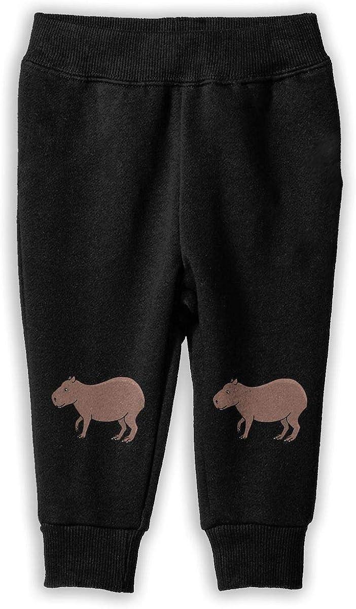 NJKM5MJ Brown Capybara Sweatpants Kids Sport Jogging Pants