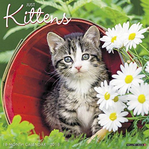 Just Kittens 2018 Calendar
